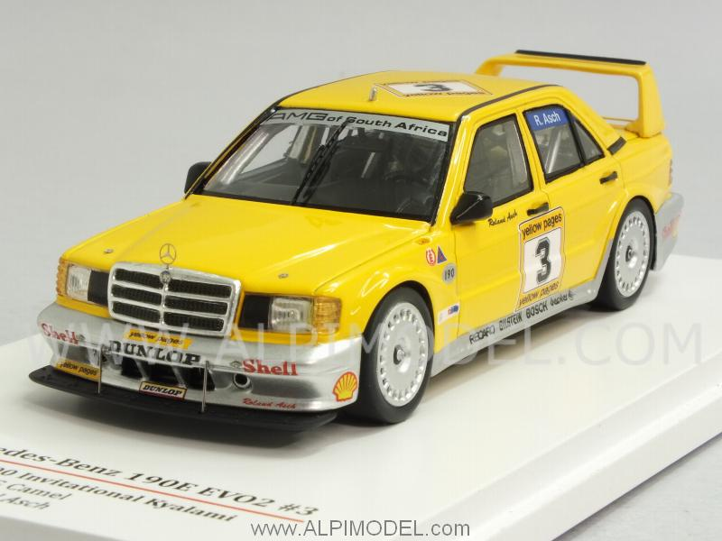 Mercedes 190E EVO2 #3 Kyalami 1990 Roland Asch by true-scale-miniatures