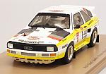 Audi Quattro S1 #1 Winner Pikes Peak Hill Climb 1985 Michelle Mouton by SPARK MODEL